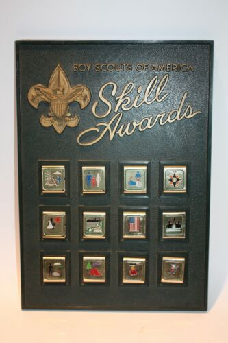 Boy Scouts of America Skill Awards Display