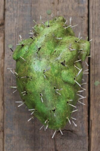 #6 Cactus Heart Prickly Handmade by Rafael Pineda Mexican Folk Art South West