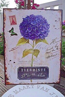 Shabby Blechschild Wandbild Hortensie Haus Garten Retro Antiklook 33 x 25 cm NEU