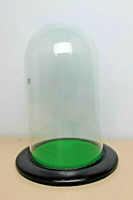 Vintage Domed Glass Display Case Bell  with Wooden Base & Green Felt 10