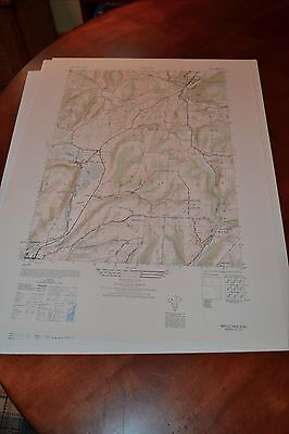 1940's Army topographic map (like USGS) Naples New York -Sheet 5569 III SW