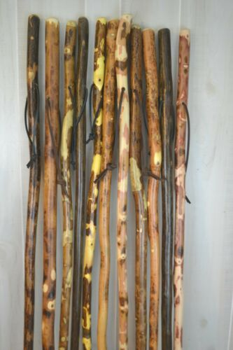 """Tall Walking Sticks 48"""" up to 72"""" Custom Height Height + Strong Customized Staff"""