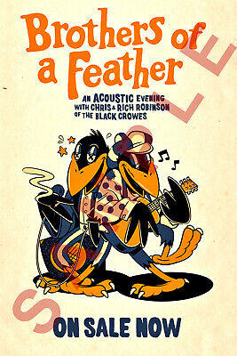 BROTHERS OF A FEATHER 12x18 BLACK CROWES TOUR POSTER ACOUSTIC EVENING ROBINSON