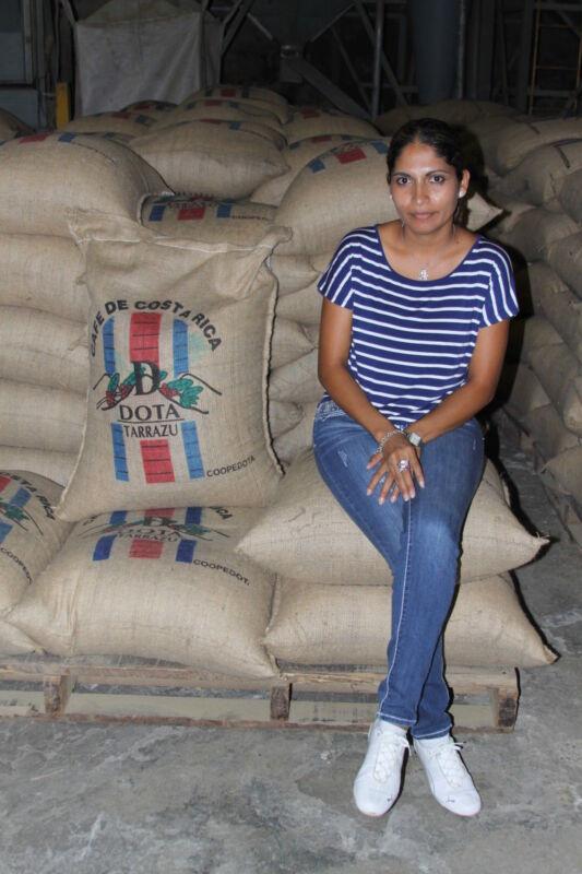 Costa Rican Gourmet Coffee Beans Dota Tarrazu Roasted Daily 5 / 1 Pound Bags
