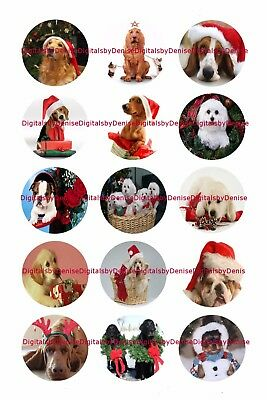 Christmas Dogs 1  Circles Bottle Cap Images   2 45  5 50    Free Shipping