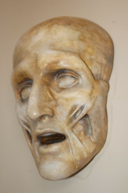 French Death Mask Human Skull Medical Anatomical Face Anatomy Oddity Gothic Rare
