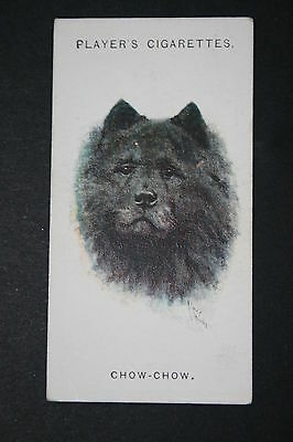 CHOW CHOW  Chinese Edible Dog   Vintage Portrait Card # VGC CAT A