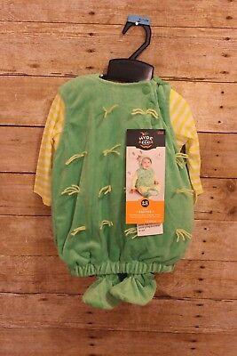 12 Month Boy Halloween Costumes (Baby Boy/Girl Plush Cactus Vest Halloween Costume Hyde Eek! Boutique 6-12)