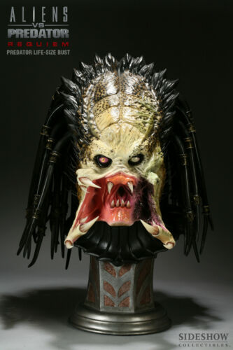 Wolf Predator Life-Size Bust Sideshow Collectibles
