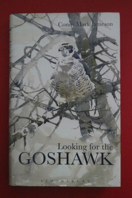 LOOKING FOR THE GOSHAWK by Conor Mark Jameson; 1st Edition (Hardcover/DJ, 2013)