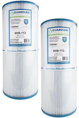 2 Pack Pool Spa Filters Fit PJW60TL-F2S FC-2800 J-300 6CH-960 Jacuzzi Whirlpool (2 Pack Pond Filters)