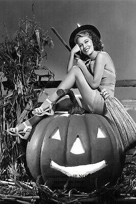 Halloween Pin Up Girl Photos (Sexy Witch PHOTO Vintage Halloween Pumpkin Freak Scary Pin-up Girl Good)