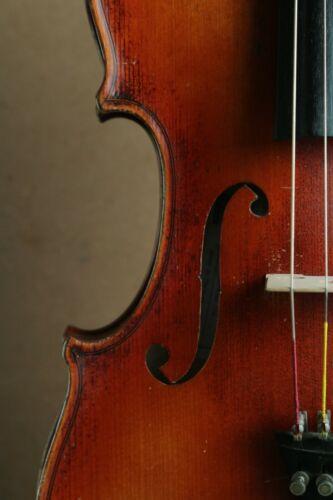 Czech viola 39.5 cms body length