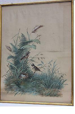 Vögel mit Gelege , Seidenmalerei Tapete im Stil des 18.Jh., 19. Jh.