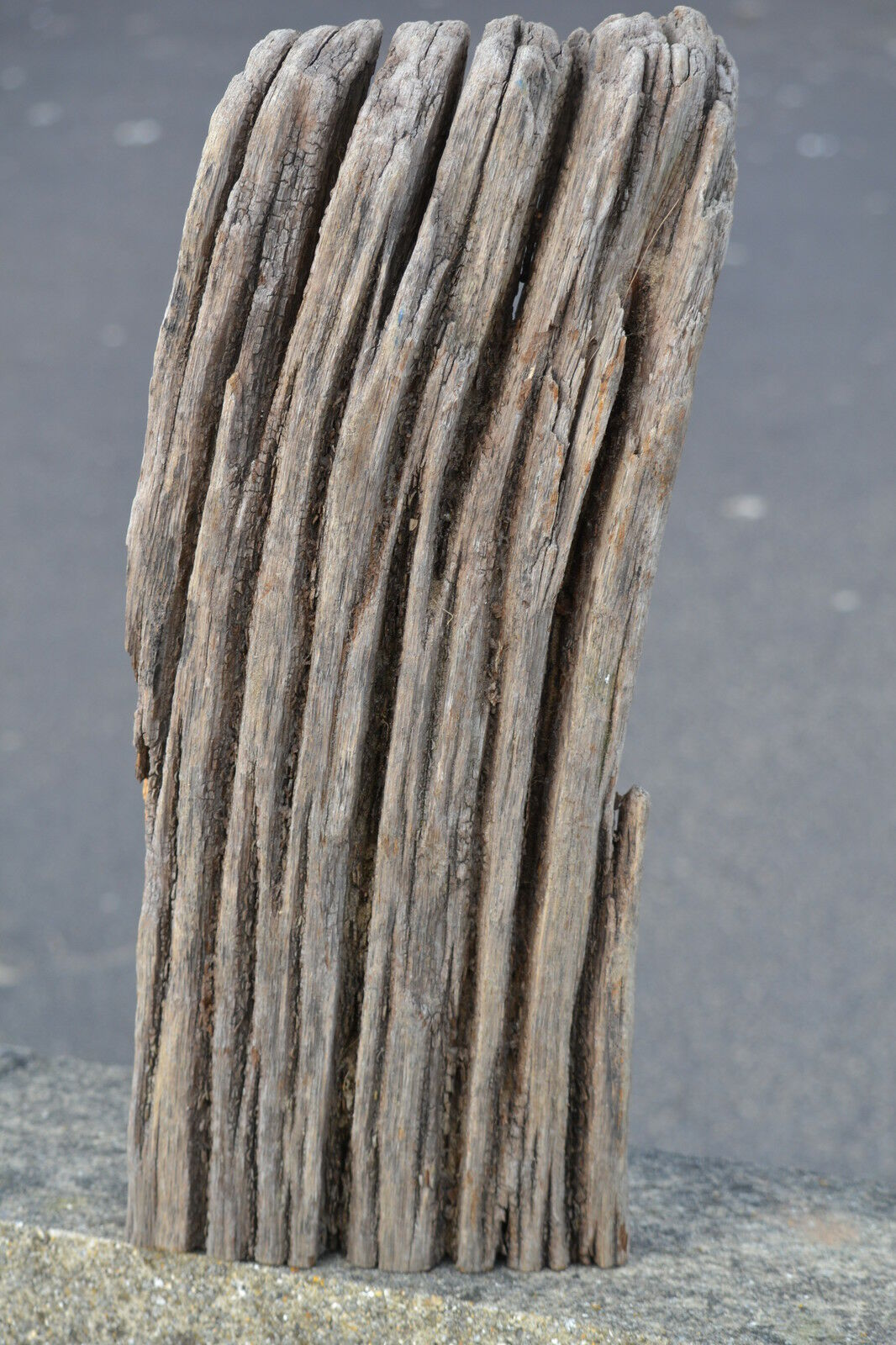 thedriftwoodshack