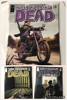 The Walking Dead Comic Book Lot X3 #13,14,15 High Grades for sale  Windsor