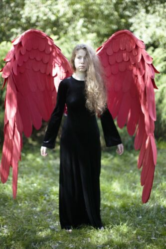 Large Red wings/Hawks from My Hero Academia Cosplay Costume/Phoenix giant wings