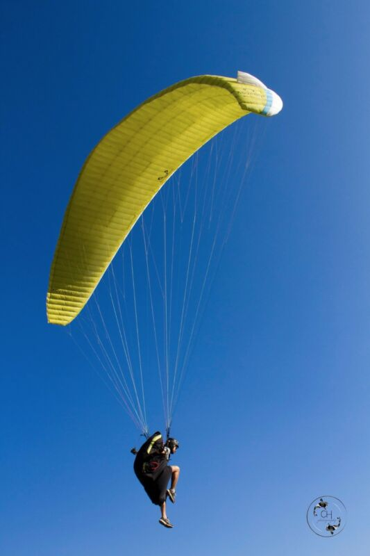 Paraglider Wing Advance Sigma 8 - S ( 65 - 85 )