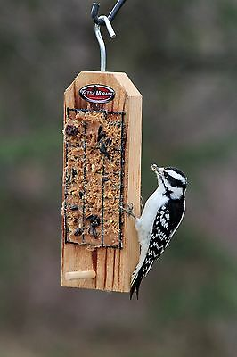 Kettle Moraine Cedar Peanut Butter Bird Feeder with Perch #8324