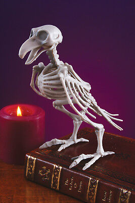 "8"" Skeleton Bird Crow Raven Spooky Scary Halloween Haunted House Decor Prop"