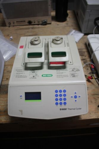 Bio-Rad S1000 Gradient Thermal Cycler WORKING