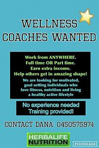 Coaches wanted! Southport Gold Coast City Preview