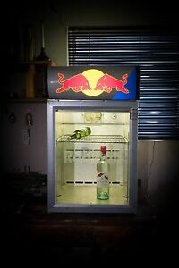 Bar Fridge, Red Bull logo Red Hill South Canberra Preview