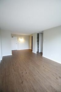 1 bedroom| Centre-Sud/Ville-Marie | July