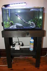 40L set up for sale on hold Leichhardt Leichhardt Area Preview