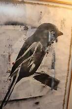 Jeremy Kibel Artwork - Untitled Bird 2012 Blackheath Blue Mountains Preview