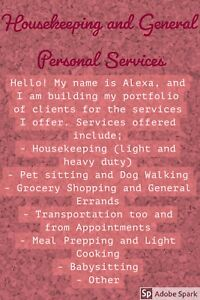 Housekeeping and General Personal Services