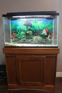 29 Gallon Aquarium Tank with a wooden stand
