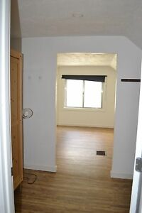 -4 bedroom + den suite close to University and Lrt -