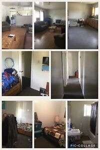 Three bedroom apt for rent Nov 1
