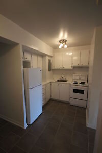 SPLIT LEVEL Renovated 3.5 avail. February - DOWNTOWN - ATWATER