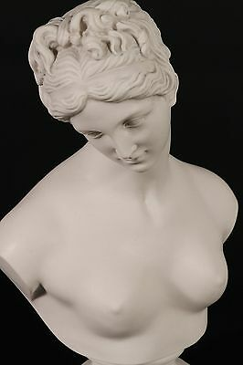 Stunning Marble Bust of Venus, Marble Classical sculpture, Gift, Art, Ornament.
