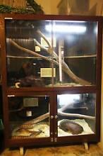 Reptile Enclosure Melbourne CBD Melbourne City Preview