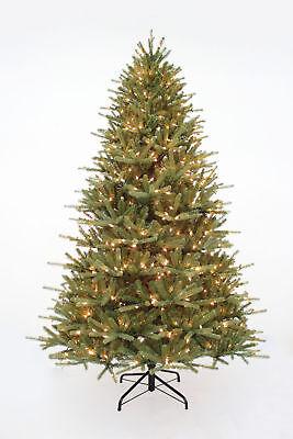 7.5' Grand Elmora Fir Tree w/ 800 Clear Lights ()