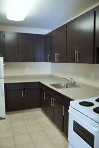 Spacious One Bedroom Suite available in St Vital