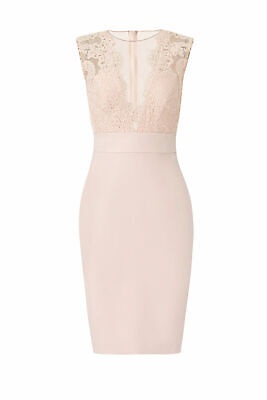 Theia Women's Dress Pink Size 8 Sheath Iluusion Neck Plunge Lace $795- #262