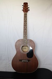 Phoenix Acoustic Guitar + HARD CASE Runaway Bay Gold Coast North Preview