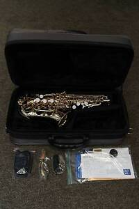 VIBRA Curved Soprano Saxophone (Demo Video) Carlingford The Hills District Preview