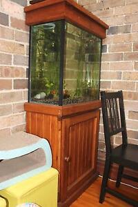 2ft fish tank /aquarium for sale with stand and hood Leichhardt Leichhardt Area Preview