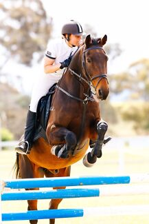 Horse riding In Matraville Matraville Eastern Suburbs Preview