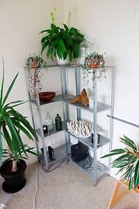 """Ikea """"Hyllis"""" Shelves Fairlight Manly Area Preview"""