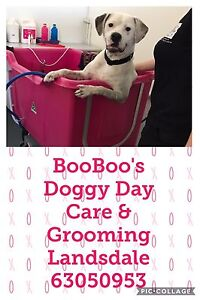 Dog grooming Landsdale Wanneroo Area Preview