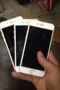 3 iphone 6 and 6s