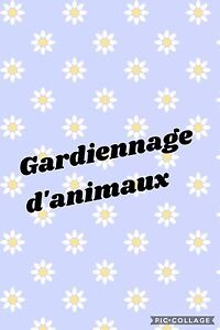 Gardiennage d'animaux