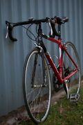 Unisex Apollo Racing Bike Glass House Mountains Caloundra Area Preview