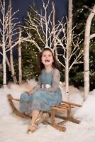 Christmas Mini-Sessions - November 25 ONLY!